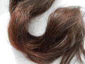 Příčesek z pravých vlasů,