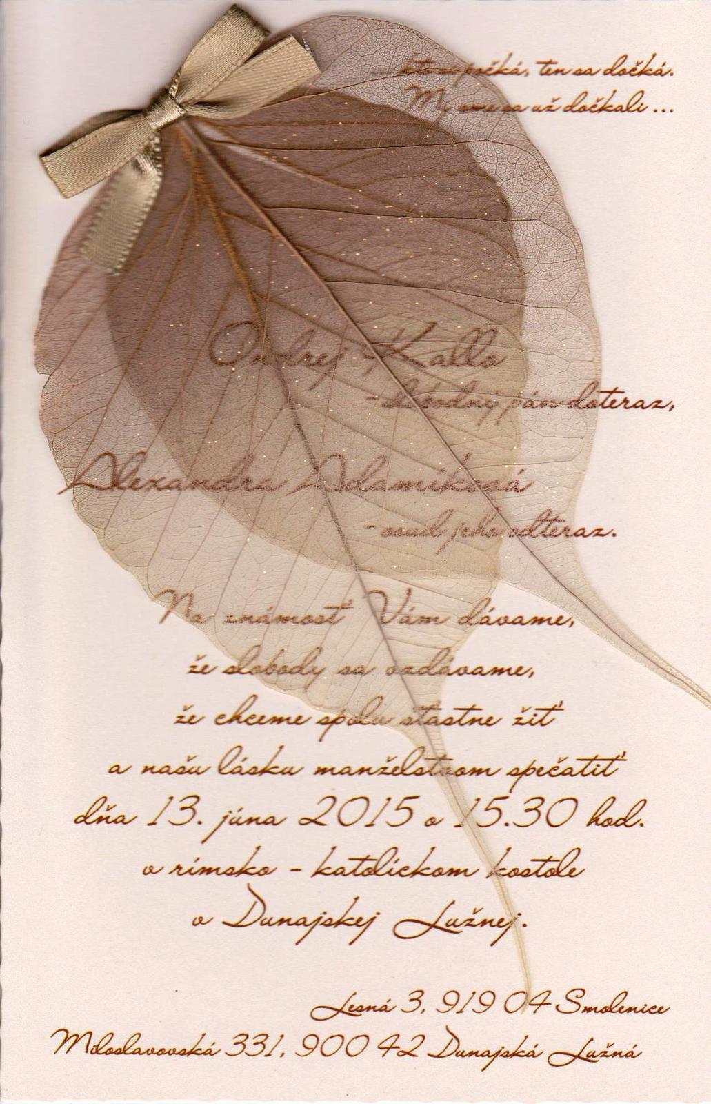 Alexandra{{_AND_}}Ondrej - Obrázok č. 1