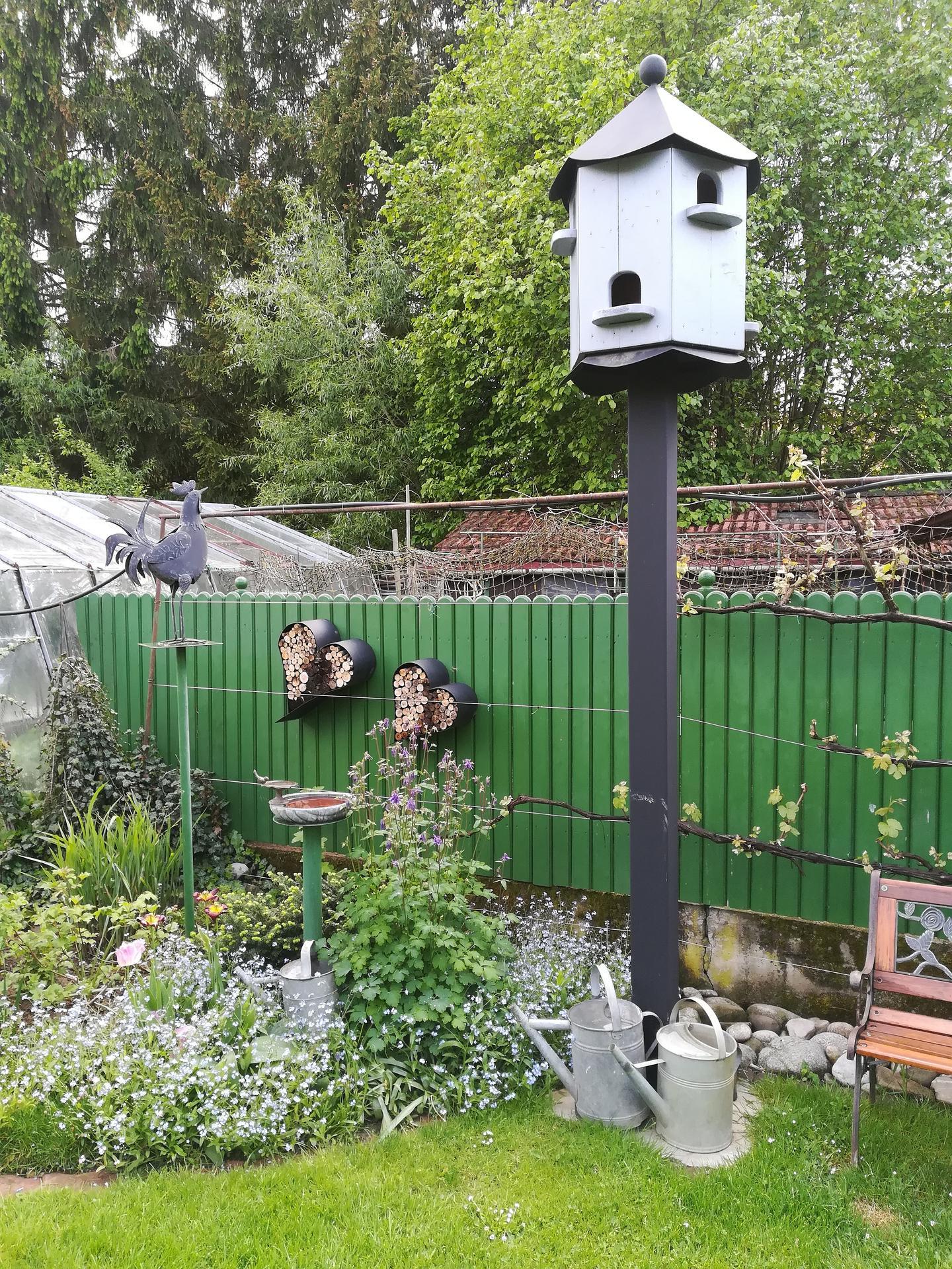 Pozdrav zo záhrady. - Obrázok č. 37