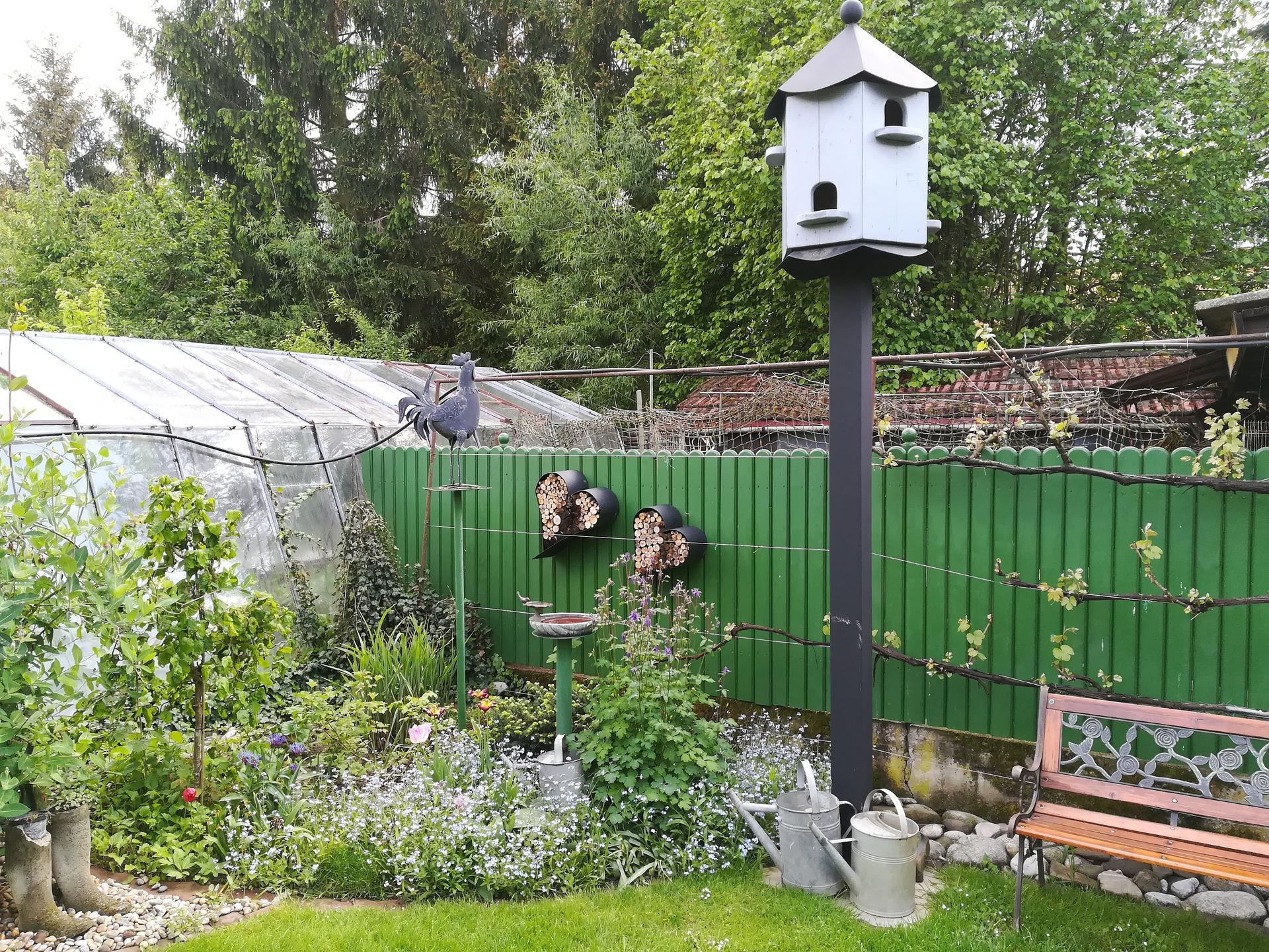 Pozdrav zo záhrady. - Obrázok č. 38