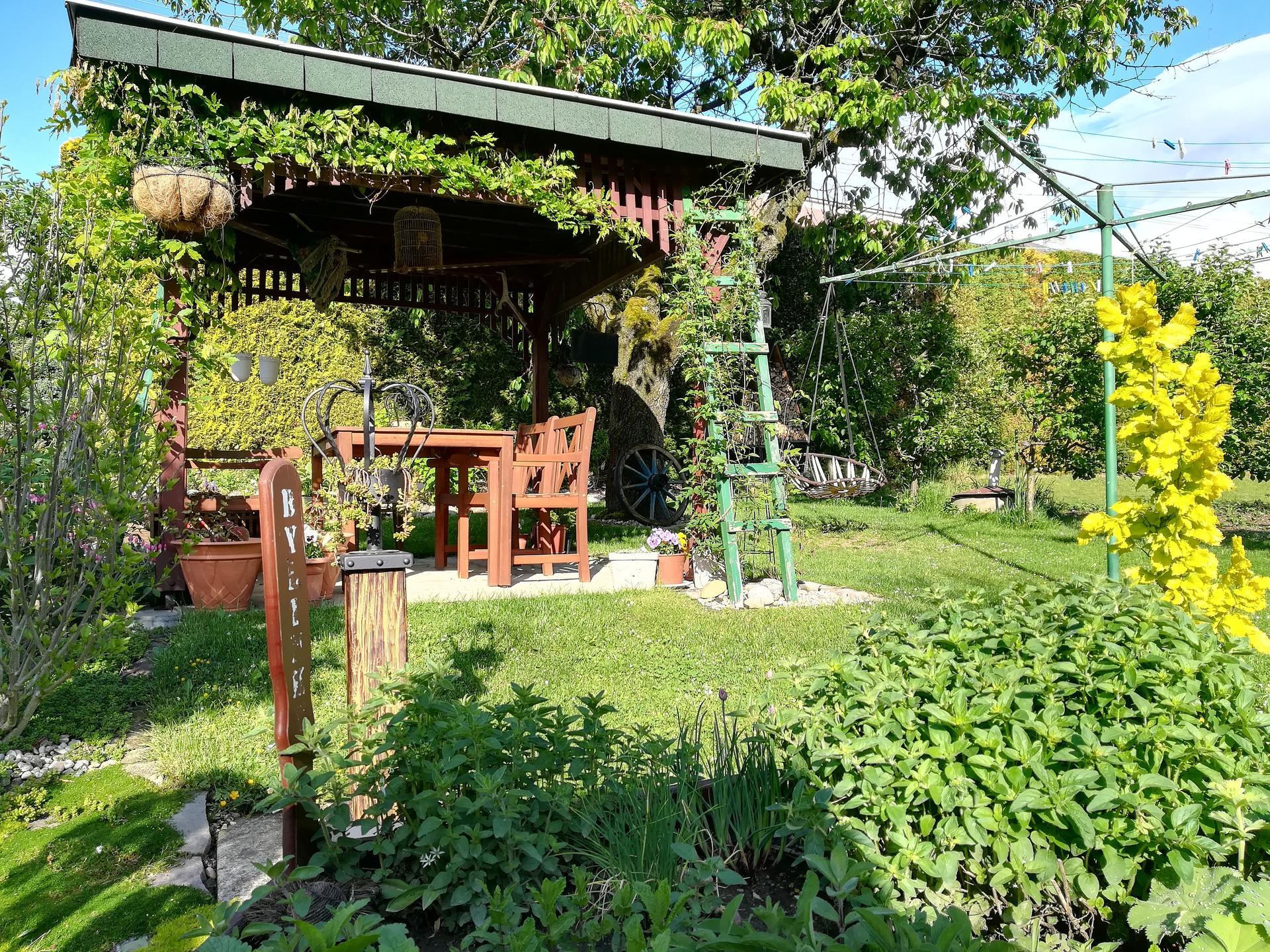 Pozdrav zo záhrady. - Obrázok č. 48
