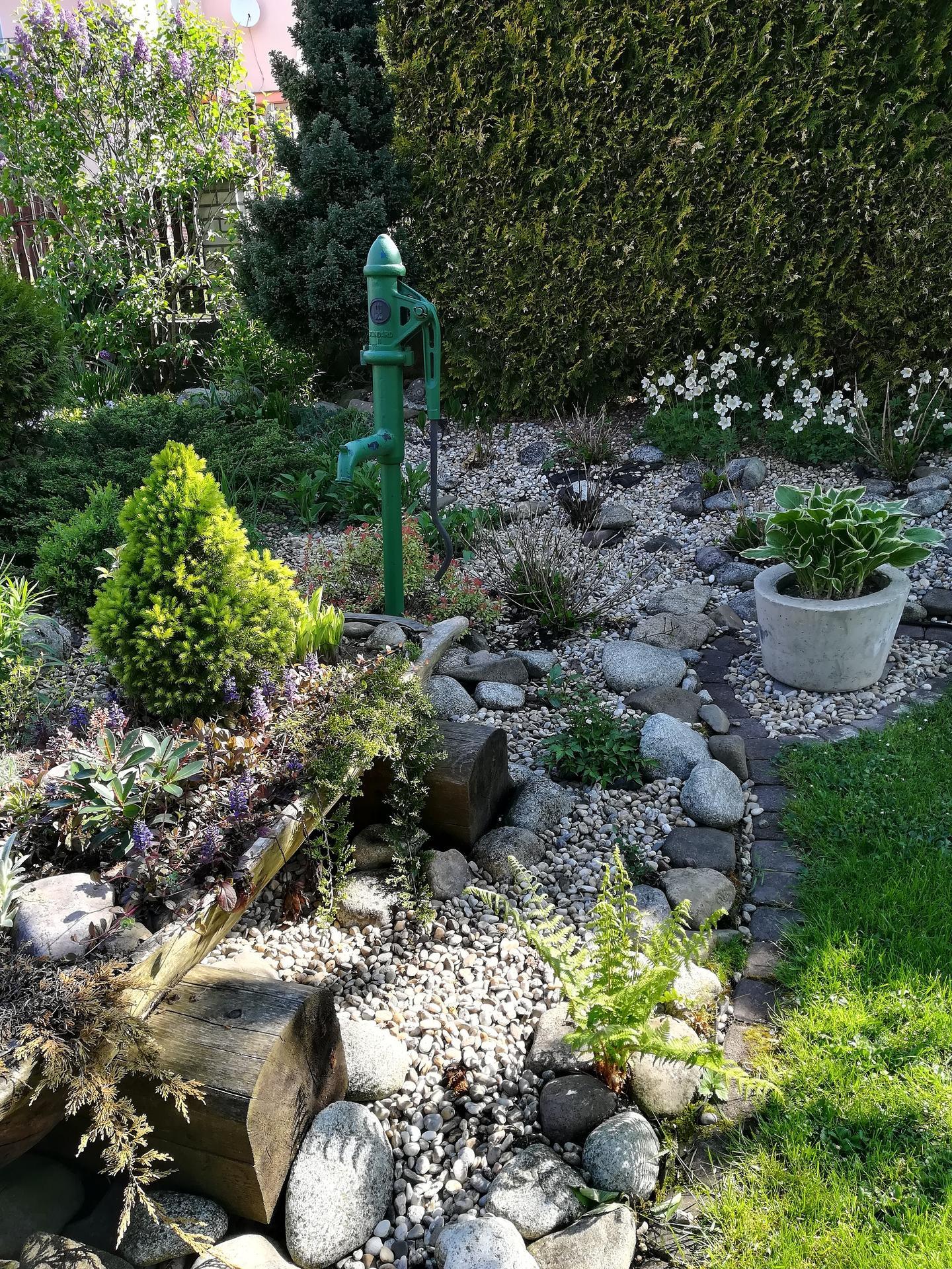 Pozdrav zo záhrady. - Obrázok č. 28