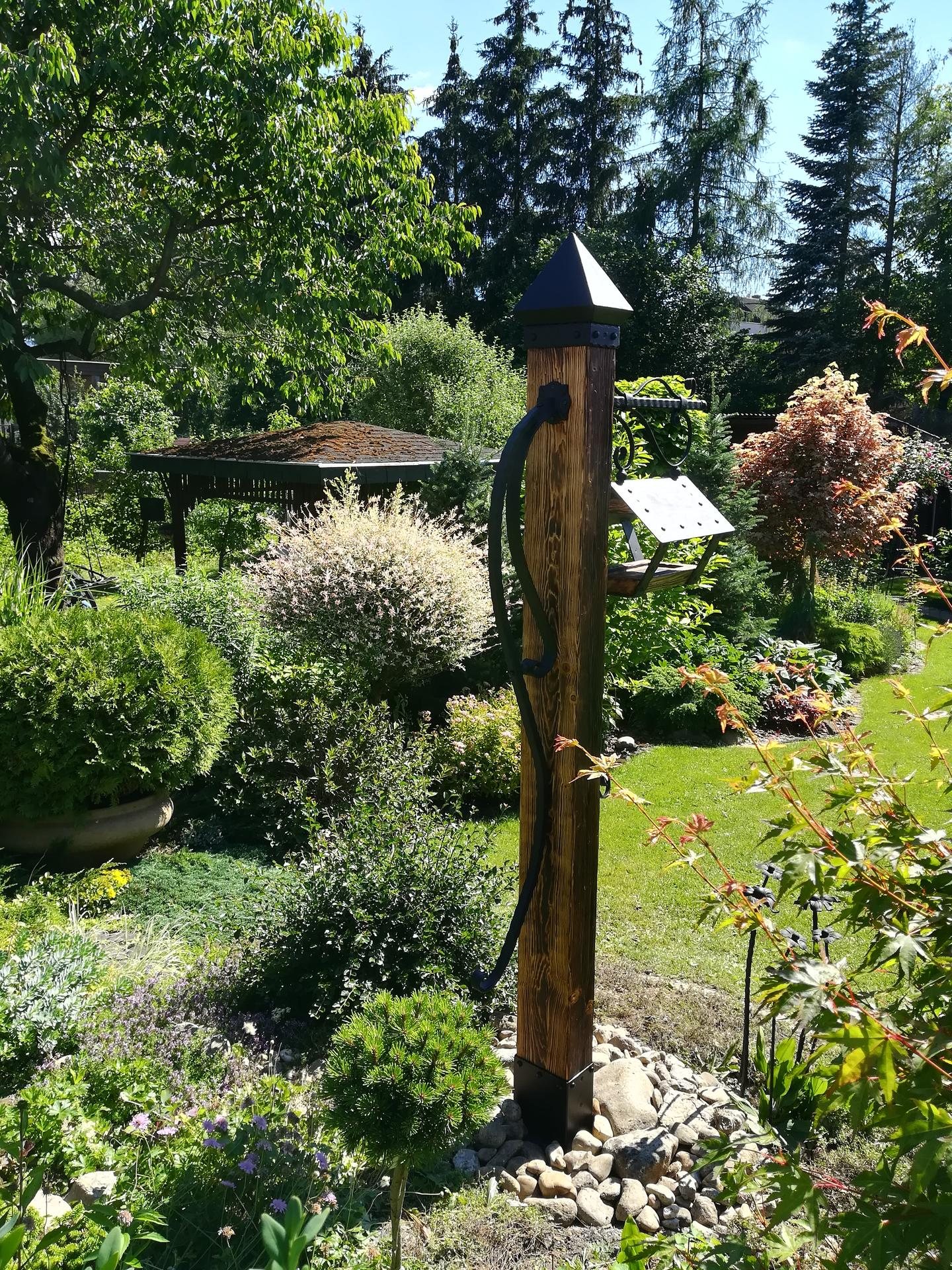 Pozdrav zo záhrady. - Obrázok č. 121
