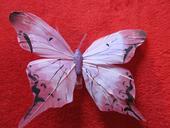 Dekorativní motýlek,