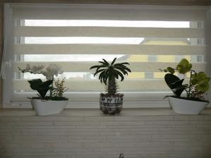 Konečně se na mě nebude nikdo dívat z protějšího okna, zda si pečlivě čistím zuby :-)
