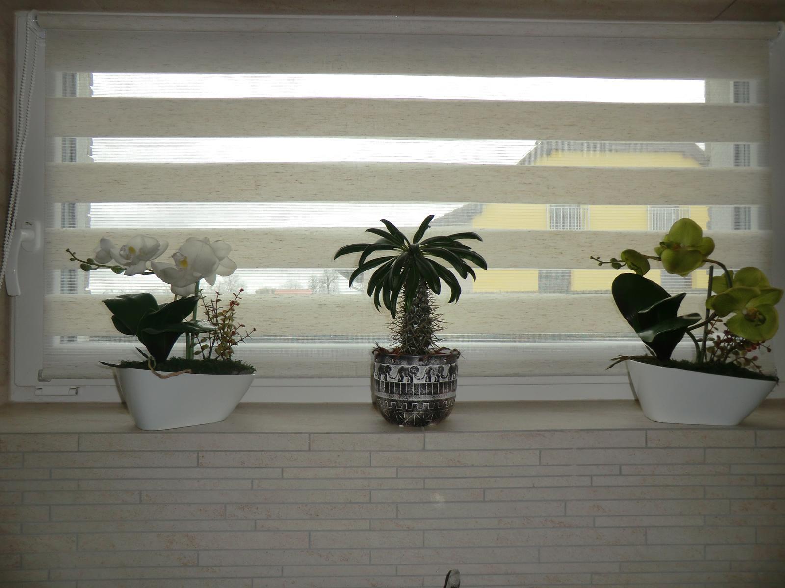 Rolety den a noc - Konečně se na mě nebude nikdo dívat z protějšího okna, zda si pečlivě čistím zuby :-)