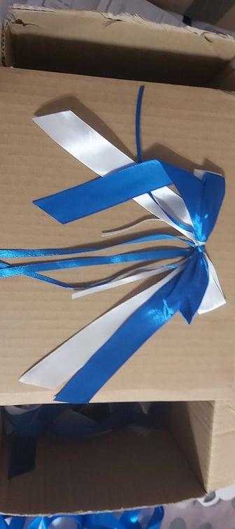 bielo modré mašle - Obrázok č. 1