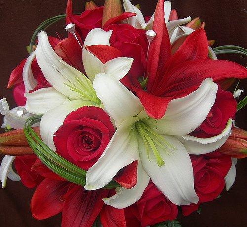 12.9.2009 - takuto kyticu chcem ale s ruzovo bielimi laliami
