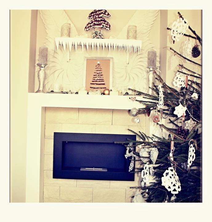 Vánoce 2012 - Obrázek č. 11