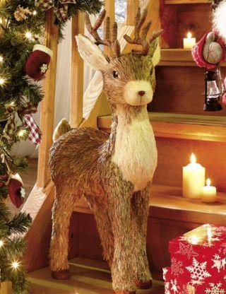 Vánoční seznam líbivostí - Rudolf :-)