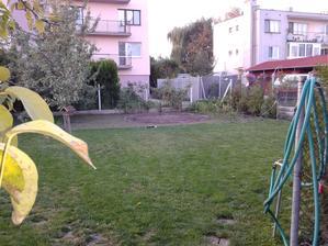 vzadu miesto na bazen a rastie nova trava