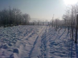 pozemok v zime