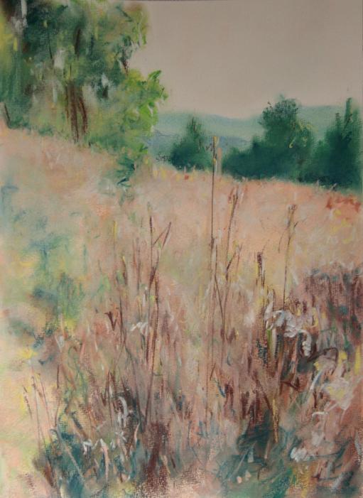 """""""leto nad Kalinovom"""", kresba prašným pastelom, formát A3"""