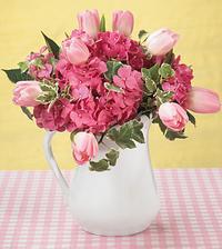 holky nevite kdy kvetou hortenzie?