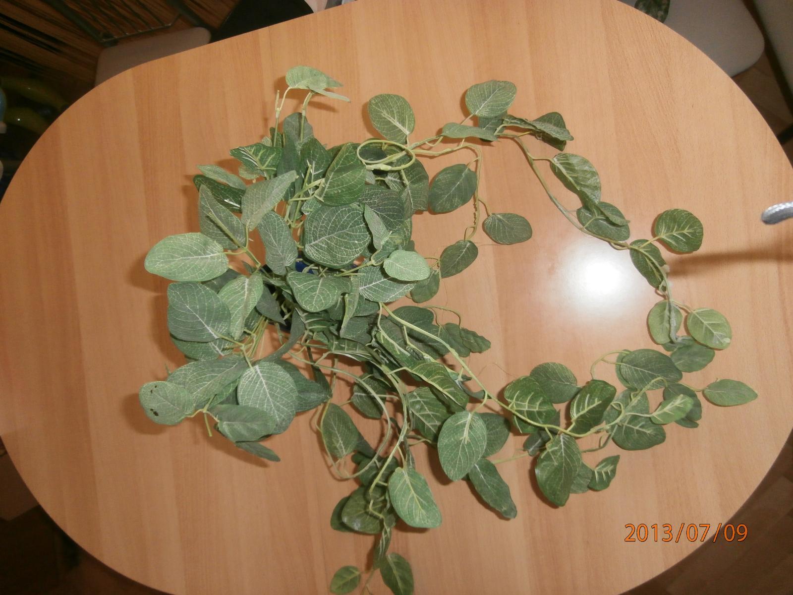 Kvet-ťahačka zelená - Obrázok č. 1