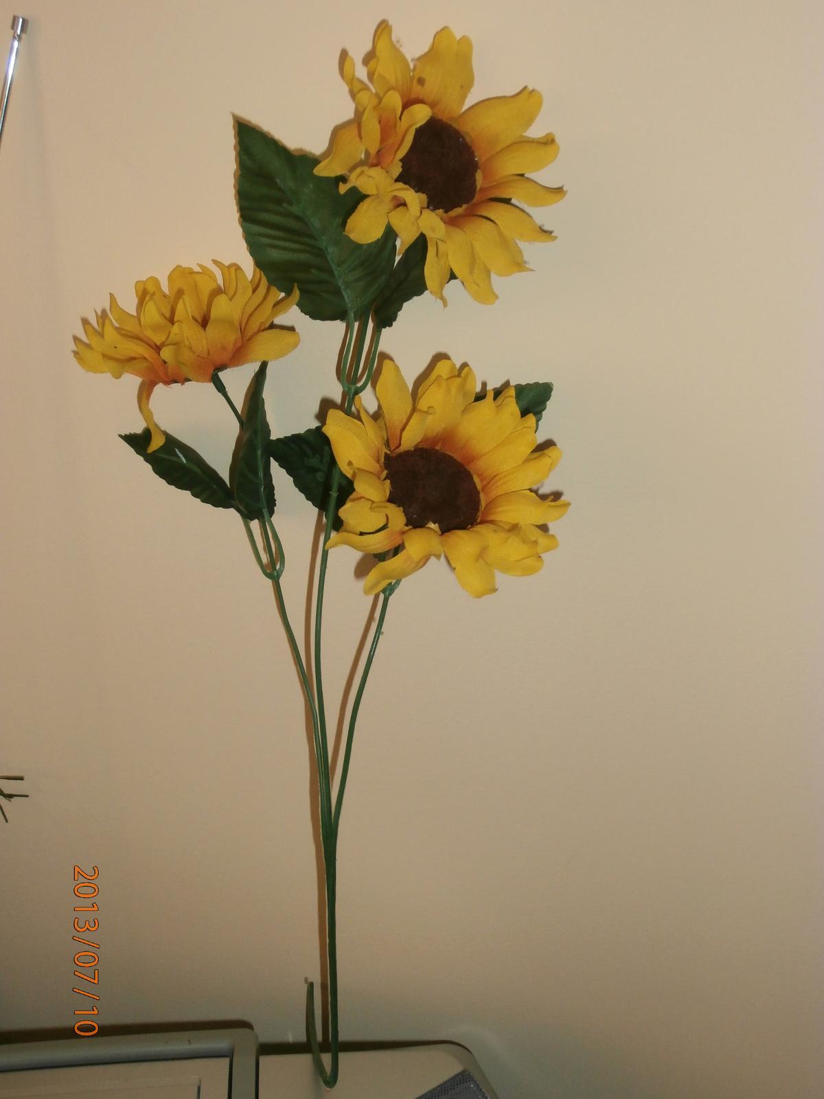 Kytica-slnečnica - Obrázok č. 1