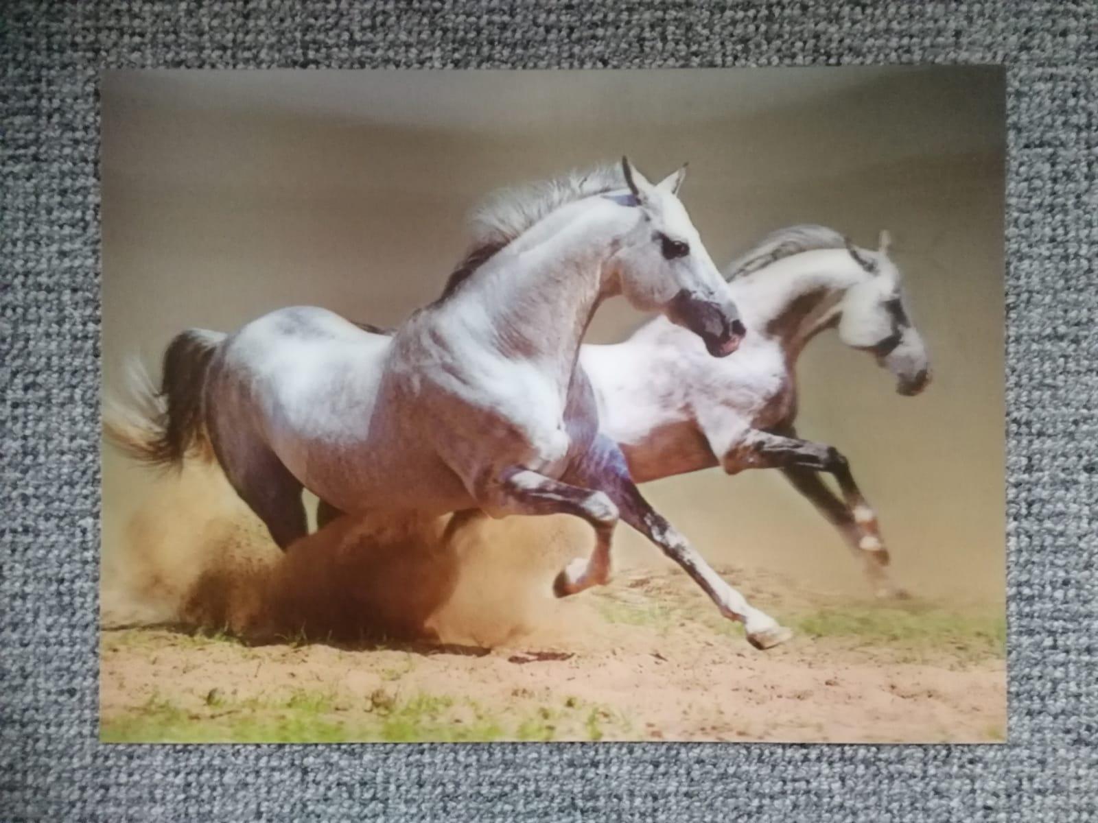 3D kone - pre milovníkov koní - Obrázok č. 1