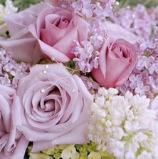 skvělá barva květin