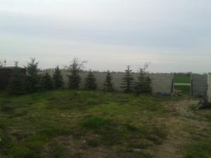 nový plot sa už rysuje...
