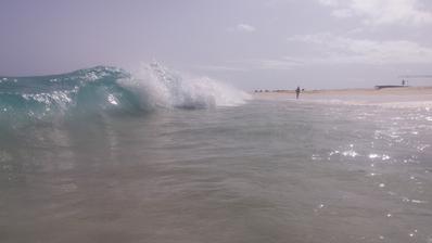 Neskutečné vlny jsme měli...