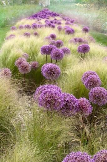 Záhrady, ktoré ma inšpirujú - Obrázok č. 100