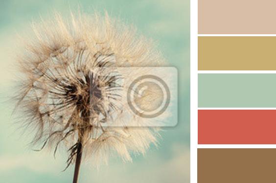 Spálňa bude - hnedá, biela, a trochu lososovej - BOHUZIAL TOTO SA NEPACILO MAJITELOVI - TOTO NEBUDE! Toto je obrazok fototapety a jeho farby... vzduch ale aj teplo.... dodržané podľa feng-shuej farby