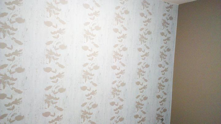 Spálňa bude - hnedá, biela, a trochu lososovej - obycajna papierova tapeta dala poriadne zabrat,ale nakoniec teda visi, a je velmi krasna :-)....