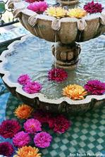 A do fontanky pred hotelom dat kvety... :-))) Jeeej! To bude super!!!
