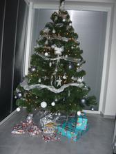 náš vianočný stromček s pár darčekmi
