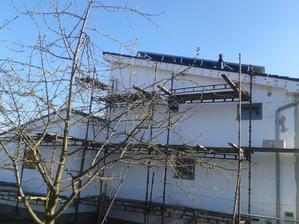 pohľad zo susedovej záhrady - potvora strom nechcel sa uhnúť :-)