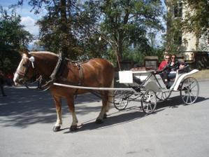 Svatební cesta - jižní Čechy