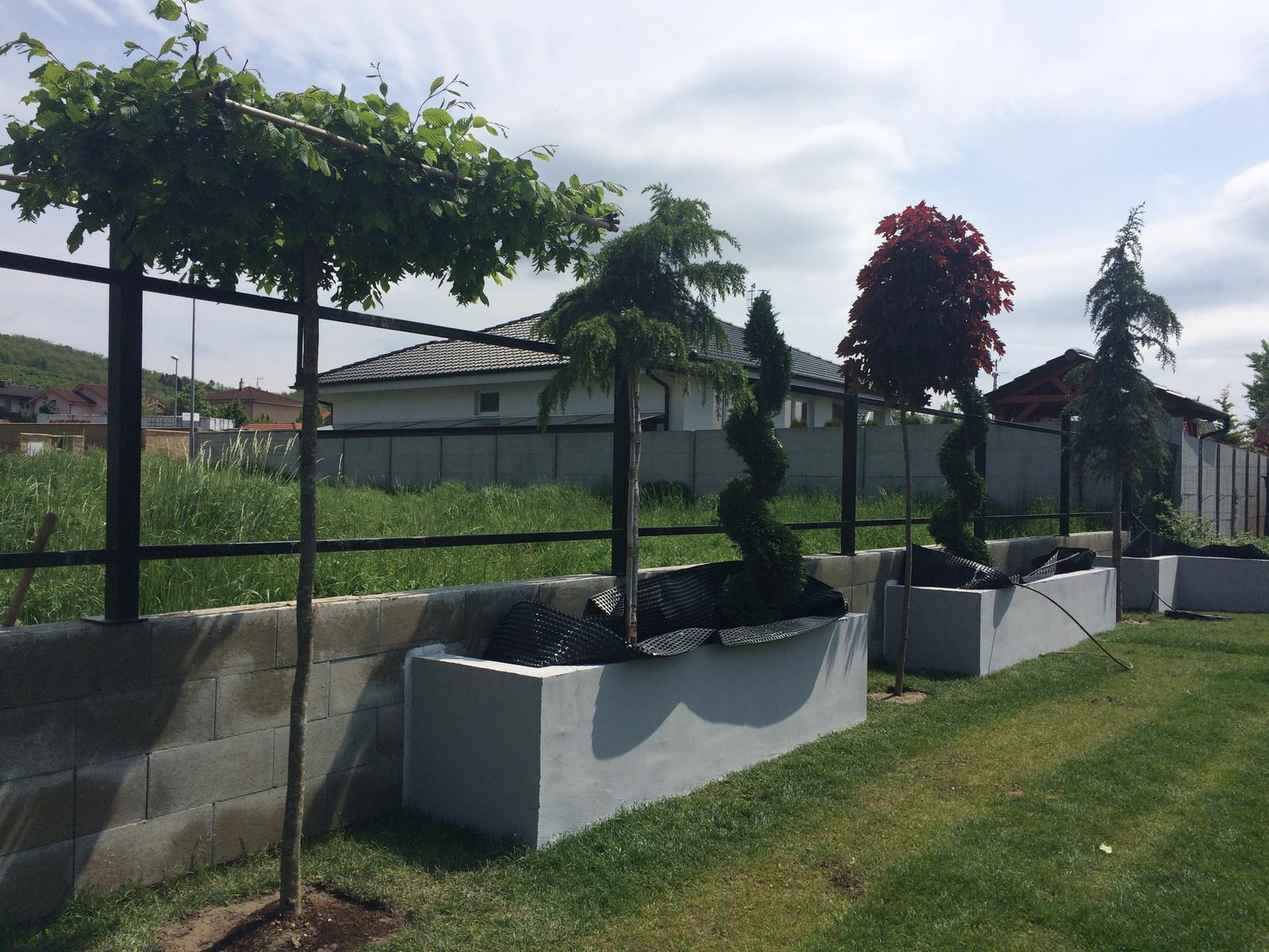 Zahradka - Zatiaľ provizórne posadena prvá várka.