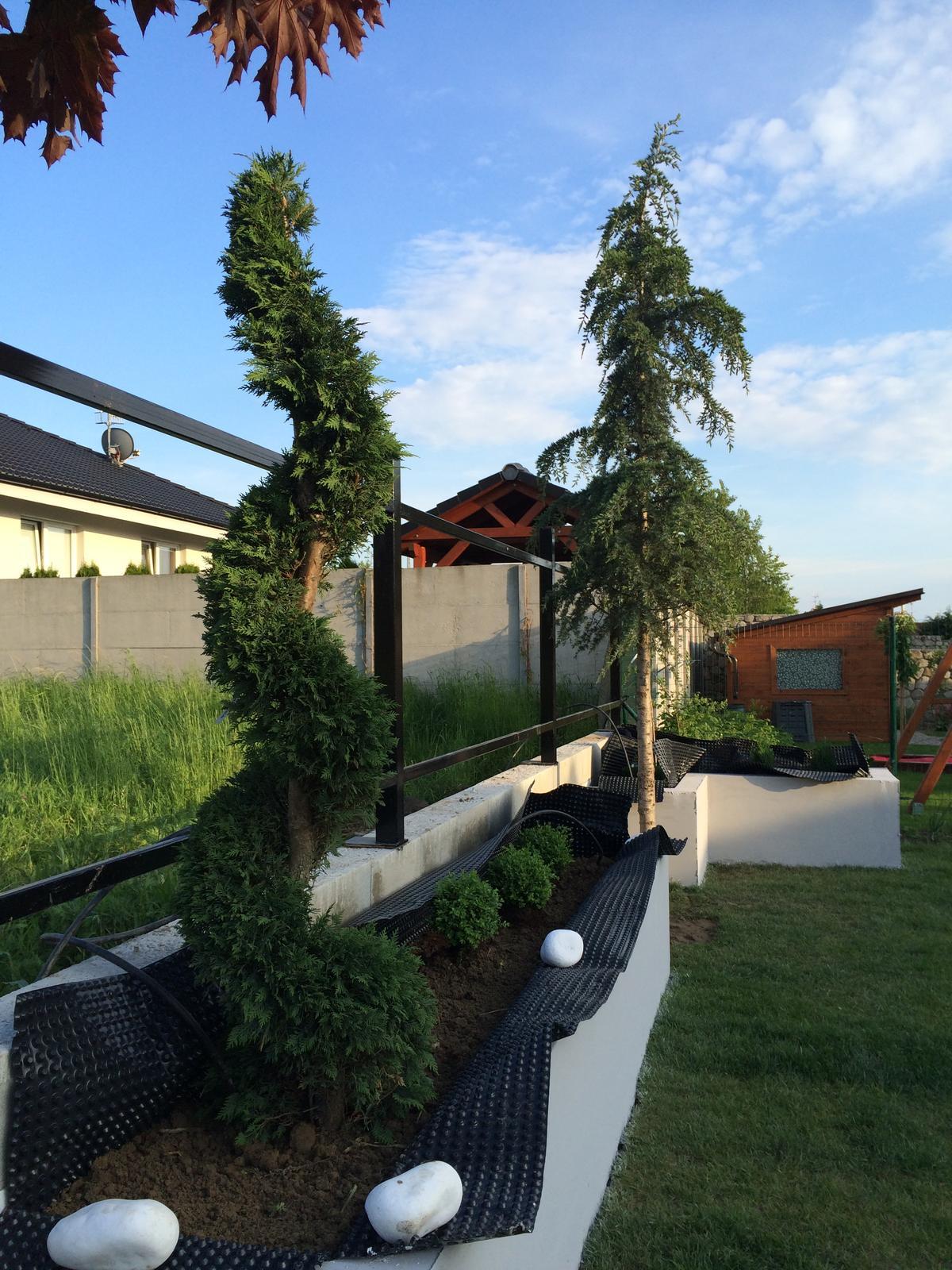 Zahradka - Predbežná výsadba.
