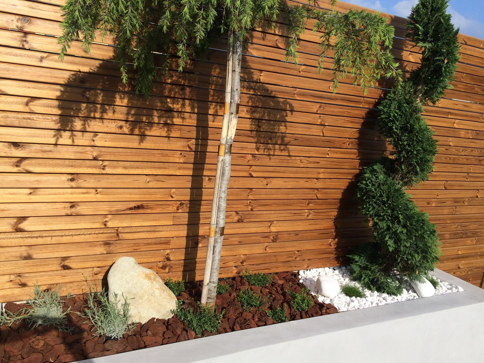 Zahradka - Obrázok č. 54