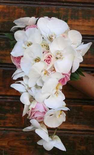 20. september 2008 - uvažujem nad takouto kyticou z orchideií a bielych ruží