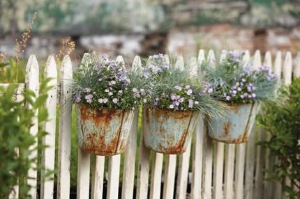 Kouzelná zahrada - Obrázek č. 80