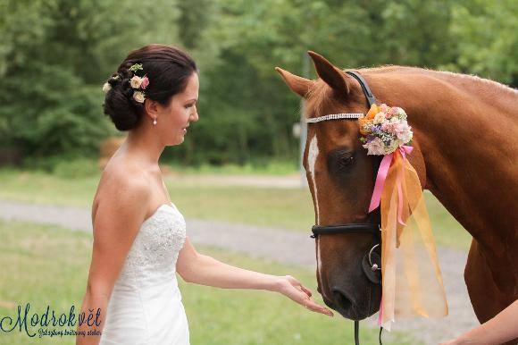 Jeden svatební koník z... - Obrázek č. 1