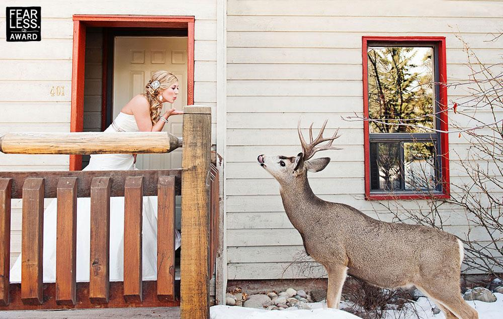 Fotoseriál 8 – Zvířata a svatba :-) - Obrázek č. 5