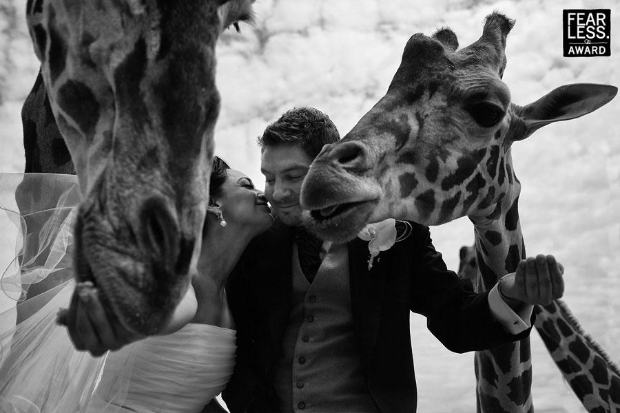Fotoseriál 8 – Zvířata a svatba :-) - Obrázek č. 6