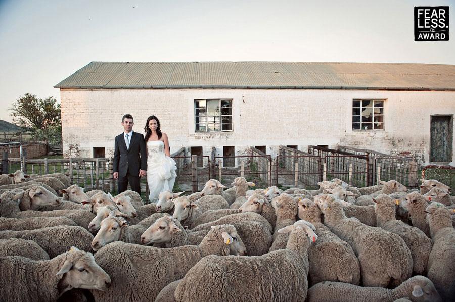 Fotoseriál 8 – Zvířata a svatba :-) - Obrázek č. 9