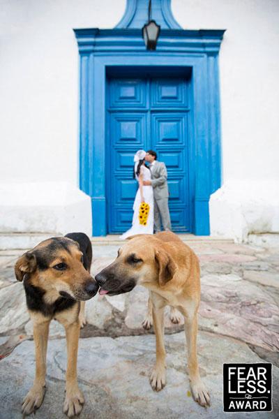 Fotoseriál 8 – Zvířata a svatba :-) - Obrázek č. 17