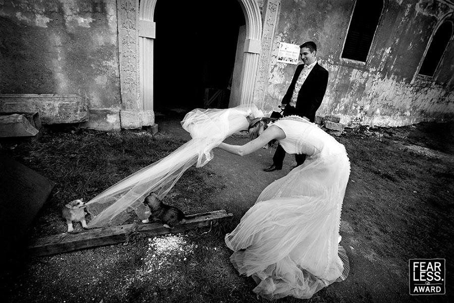 Fotoseriál 8 – Zvířata a svatba :-) - Obrázek č. 18