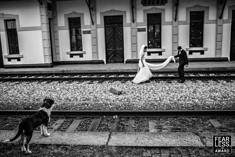 Fotoseriál 8 – Zvířata a svatba :-) - Obrázek č. 19