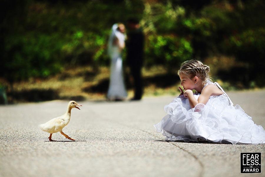 Fotoseriál 8 – Zvířata a svatba :-) - Obrázek č. 20