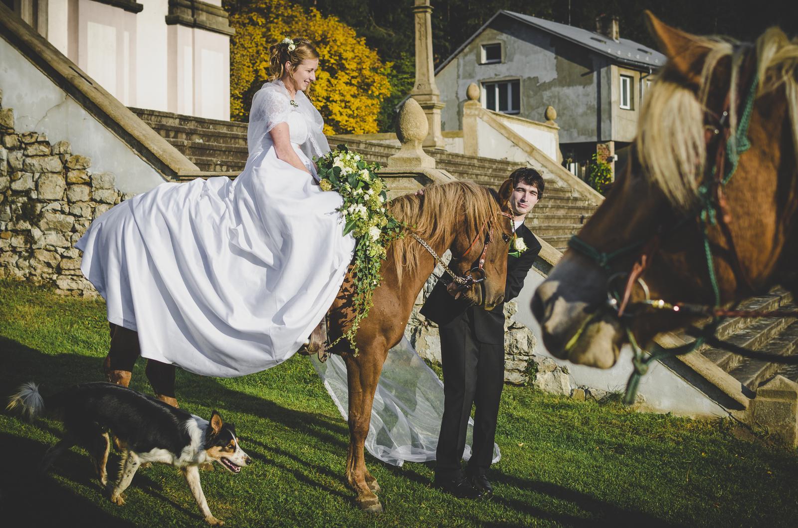 Něco málo že svatby... - Obrázek č. 1