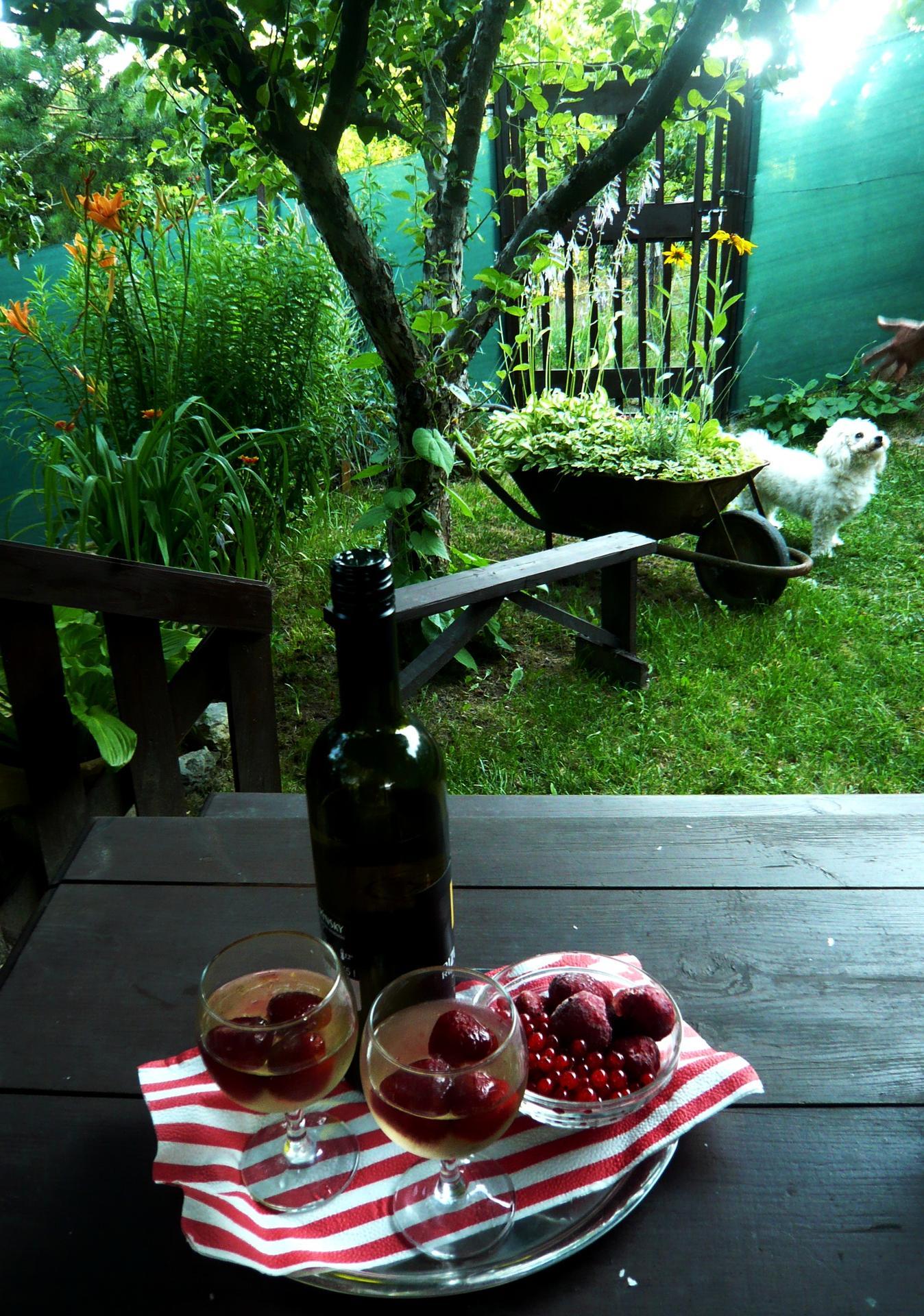 Záhrada nie je len... - Obrázok č. 2