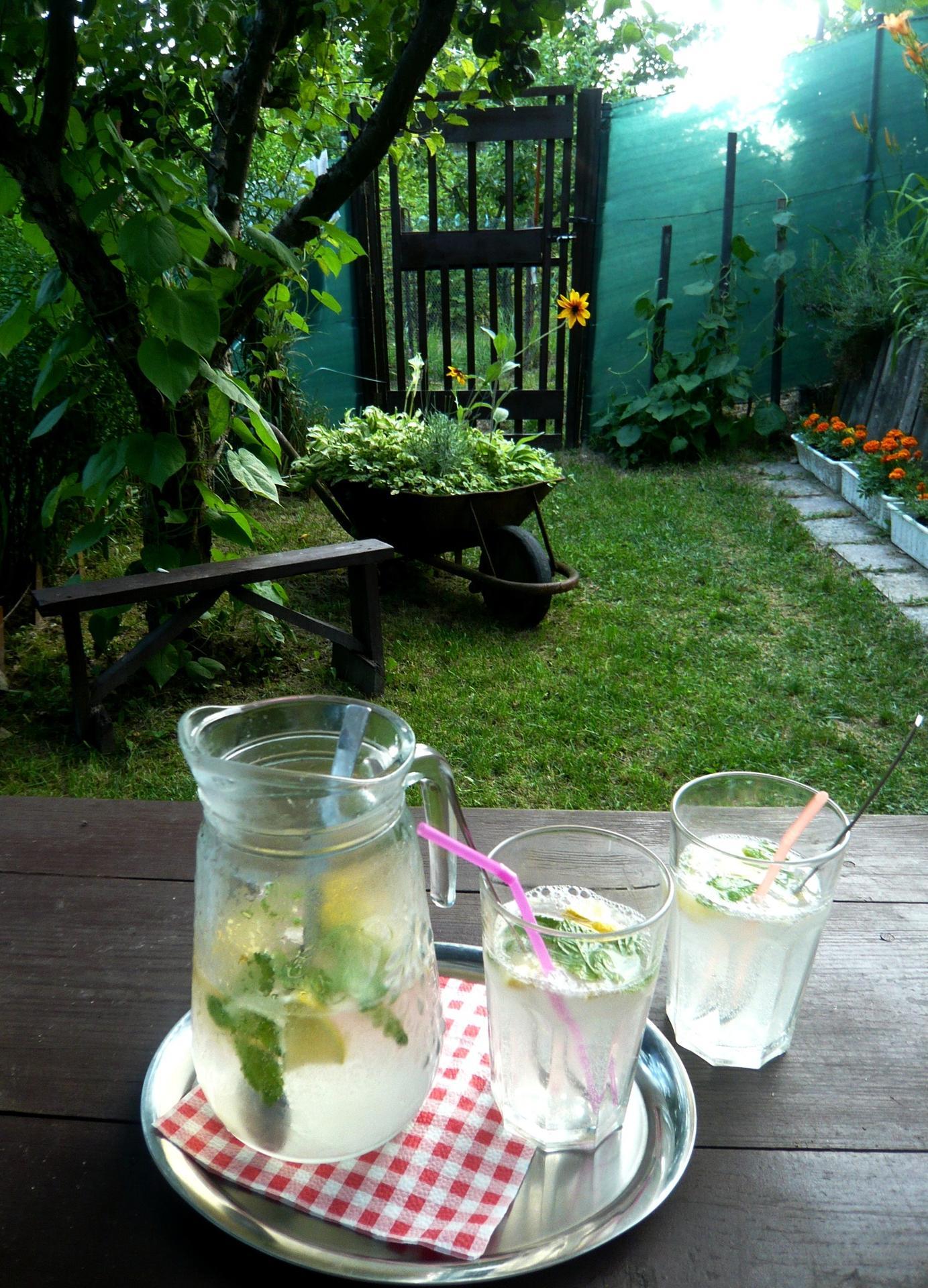 Záhrada nie je len... - Obrázok č. 3