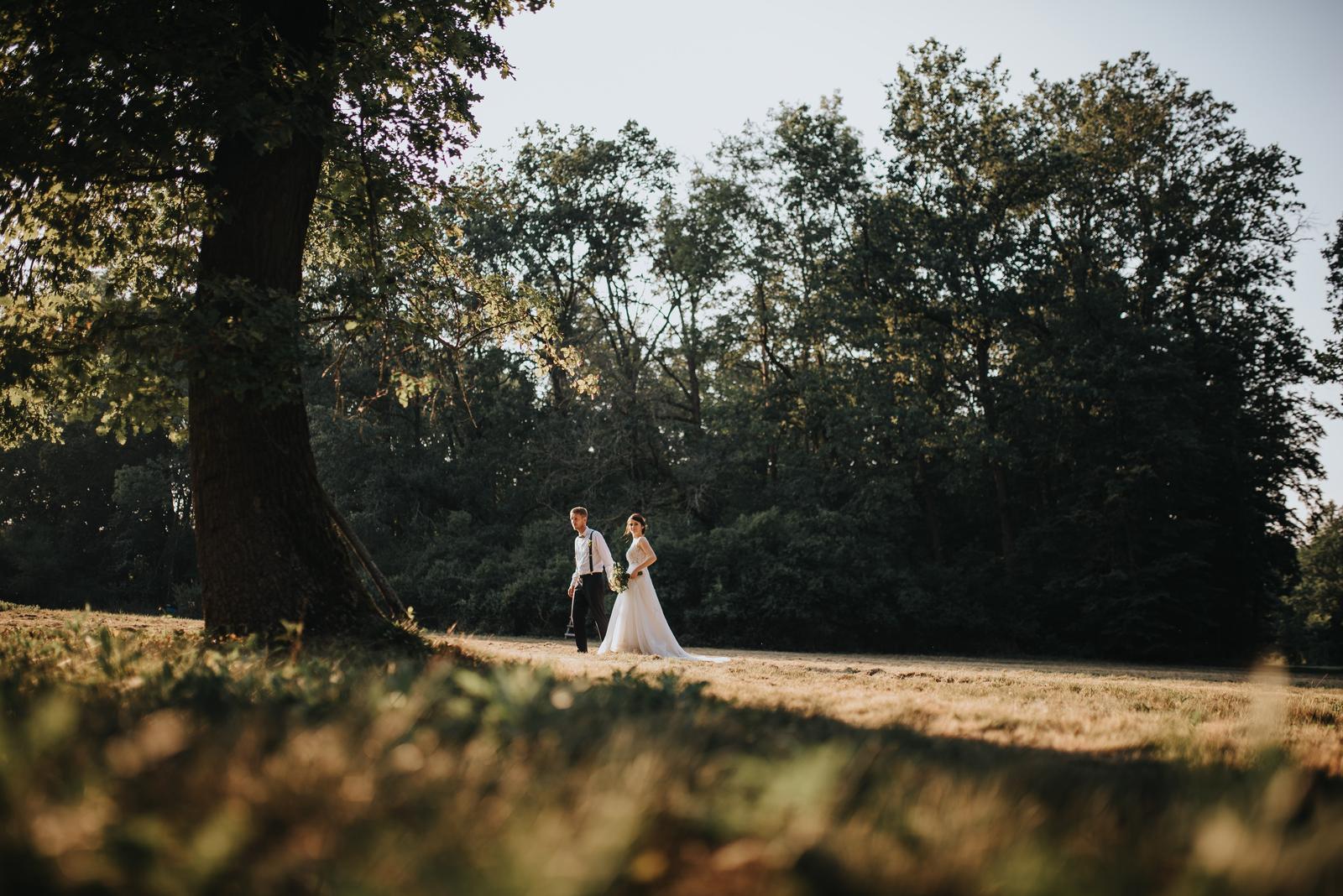 :-)  Dobrý den Váš svatební... - Obrázek č. 1