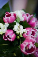 Všem, kteří mají rádi tulipány je doporučuju, byly krásné a kytku jsem měla ještě týden :)