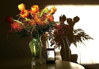žádost o ruku - kytice z tulipánu a zásnubák